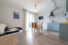 b117_24044_salon_z_kuchnia_apartament